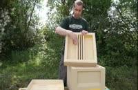آموزش حرفه ای پرورش زنبور عسل 02128423118-09130919448-wWw.118File.Com