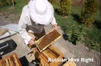 صفرتاصدپرورش زنبورعسل در118فایل 02128423118-09130919448