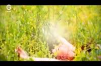 دانلود قسمت 56 بوی توت فرنگی دوبله فارسی سریال