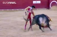 گاوباز جوان اسپانیایی جان باخت