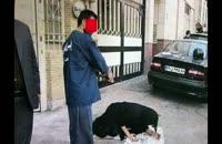 دخترها رکورد خواستگاری از بازیگر جوان سینمای ایران