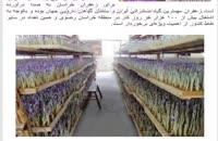 طرح توجیهی پرورش زعفران در گلخانه (کشت به روش ایروپونیک) ویرایش سال 96 قابل ارائه به سامانه کارا