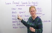 آموزش قدم به قدم زبان انگلیسی 02128423118-09130919448-wWw.118File.Com