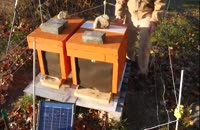راه های شروع زنبورداری برای مبتدیان در wWw.118file.com