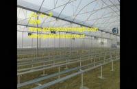 شرکت گلخانه ساز-گلخانه سازی-گلخانه اسپانیای-ساخت گلخانه اسپانیای