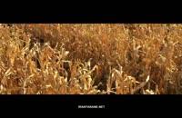 دانلود رایگان فیلم 21 روز بعد از لینک مستقیم FullHD1080P