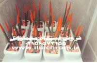 سازنده دستگاه ابکاری فانتاکروم/ابکاری پاششی 09127692842