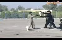 نیرو های بسیار حرفه ای ارتش