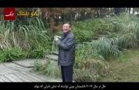 ایران کانتین: شنل نامرئی هم ساخته شد!