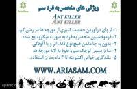 نابودی قطعی مورچه با استفاده از سم قوی انت کیلر