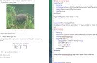 012023 - آموزش نرم افزار LaTeX سری دوم