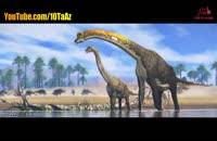 بزرگترین جانوران روی زمین
