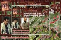 ششدر: شاعر حسن اسدی شبدیزبا صدای مسعود مهرابی