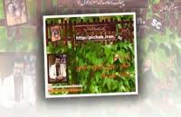 گل در آتش : شاعر حسن اسدی ،شبدیز با صدای علی تنها