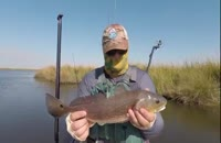 پکیج کامل آموزش ماهیگیری مقدماتی02128423118-09130919448-wWw.118File.Com