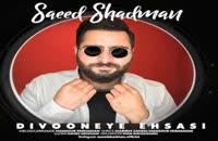 دانلود آهنگ سعید شادمان دیوونه ی احساسی (Saeed Shademan Divoneye Ehsasi)