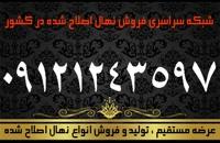نهال گردو چندلر خوشه ای اصلاح شده دیرگل زودبازده پاکوتاه پیوندی 09121243597