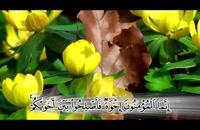 ترجمه تصویری سوره حجرات