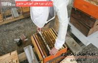 آموزش کامل پرورش زنبور عسل بصورت گام به گام