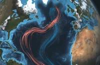 مستند Planet Ocean