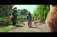 دانلود انیمیشن نبرد خرگوش ها با دوبله فارسی Peter Rabbit