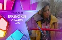 دانلود رایگان قسمت 30 سریال پرنده سحرخیز - Erkenci Kus با زیرنویس فارسی