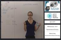 fMRI Bootcamp Part 7 - Representational Similarity