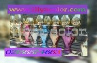 دستگاه مخمل پاش 09195498568 دستگاه فانتاکروم ایلیاکالر