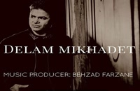 Dariush Zare Delam Mikhadet