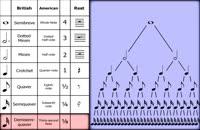 006005 - تئوری موسیقی سری اول