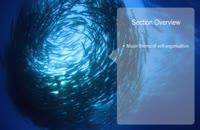 028272 - سیستم های سازگار پیچیده (Complex Adaptive Systems)