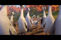 دانلود زیرنویس فارسی انیمیشن Duck Duck Goose 2018