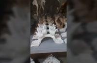مجسمه فایبرگلاس | ساخت مجسمه فایبرگلاس