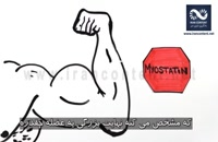 روش علمی عضله سازی در ورزش و بدنسازی