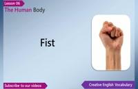 (Learn English – English Vocabulary Lesson 6 – Body Parts (Human Body