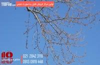 پکیج آموزش صفر تا صد زنبورداری-09130919446