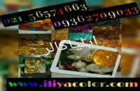 دستگاه مخمل پاش خانگی و صنعتی 02156574663 ایلیاکالر