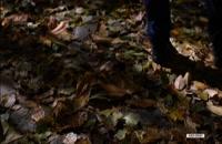 دانلود رایگان فیلم مصادره|سینما|لینک مستقیم|4K|1080p|720p|480p