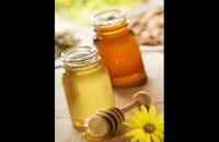 فروش عسل طبيعي وارگانيک