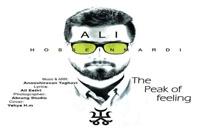 دانلود آهنگ قله احساس از علی حسین مردی