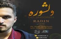 Radin Delshooreh