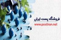 خرید بلوبری خشک فروشگاه پست ایران