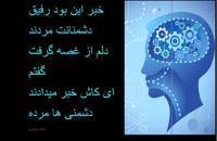 برگزیده اشعارکوتاه/سعید وزیری/1