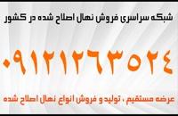 نهال گردو چندلر خوشه ای دیرگل اصلاح شده زودبازده پاکوتاه پیوندی 09121243597