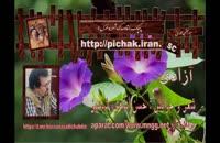 آزادی : شعر و خوانش حسن اسدی ،شبدیز