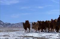 سیاره انسان 2 - Deserts Life in the Furnace