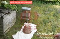 فیلم آموزش زنبورداری بصورت کامل و گام به گام-www.118file.com