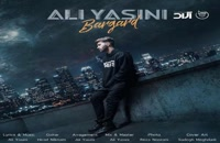 دانلود آهنگ جدید و زیبای علی یاسینی با نام برگرد