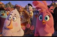 دانلود رایگان دوبله فارسی انیمیشن پرندگان خشمگین Angry Birds 2016