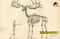 حیوانات بی نظیری که منقرض شدند_فلزیاب دستی_09917579020